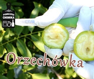Orzechówka cz. 1