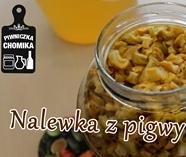 nalewka pigwa www