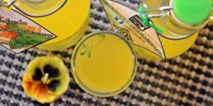 napój-mięta-pomarańcza