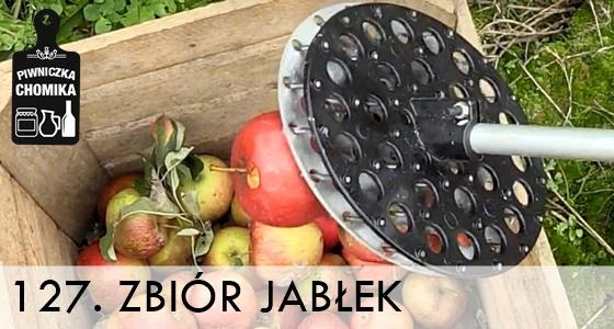 Zbieranie jabłek za pomocą ręcznych zbieraków automatycznych