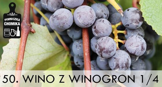 Wino z winogron cz. I