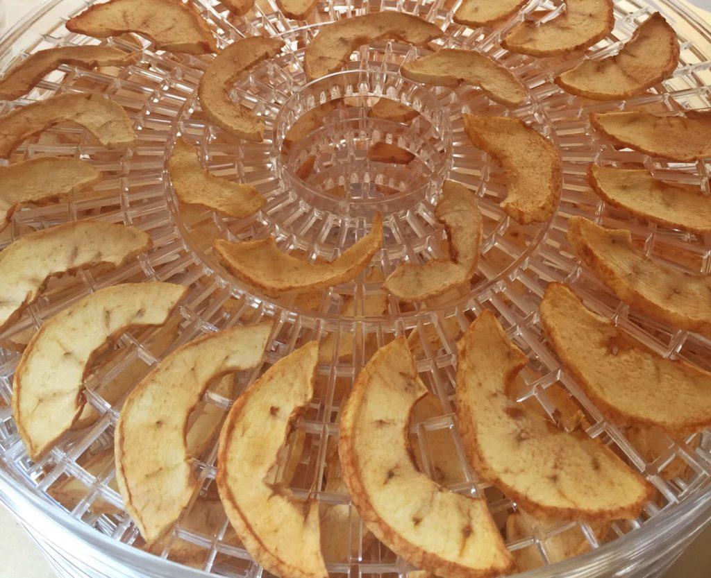 Suszenie jabłek - chipsy jabłkowe - Piwniczka Chomika